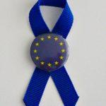 KOKARDKA Z PRZYPINKĄ UE 2