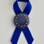 KOKARDKA Z PRZYPINKĄ UE 3