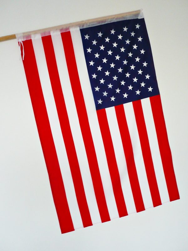FLAGA USA 1