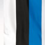 FLAGA ESTONII 1